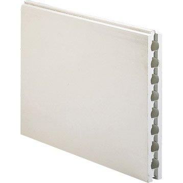 Carreau de plâtre creux hydrofuge L.66 x l.66 x Ep.7 cm
