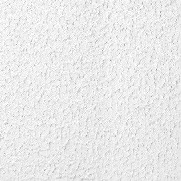 Peinture à Effet Crépi Tradition Maison Deco Blanc 15 Kg Leroy