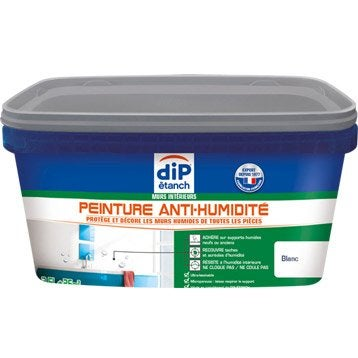 Peinture antihumidité, DIP blanc 2.5 l