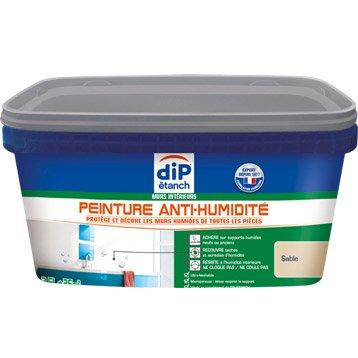 Peinture antihumidité, DIP sable 2.5 l