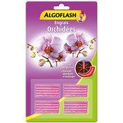 terreau orchid es algoflash 6 l leroy merlin. Black Bedroom Furniture Sets. Home Design Ideas