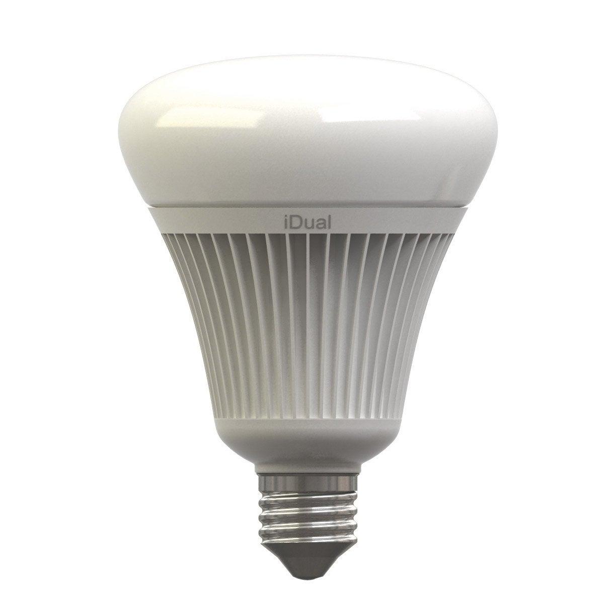 Ampoule Globe Led Changement De Couleurs T L Commande 16 5w E27