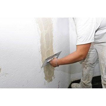 Cours de bricolage nos ateliers de bricolage en magasin leroy merlin - Reparer fissure mur platre ...