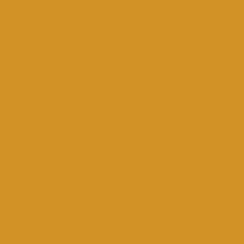 Peinture jaune ambre mat RIPOLIN Murs et boiseries 0.5 l