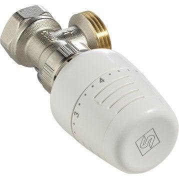 Robinet et accessoires pour radiateur eau chaude - Robinet thermostatique radiateur programmable ...