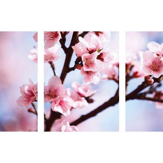 Verre imprim triptyque floral x cm leroy merlin - Tableau magnetique leroy merlin ...