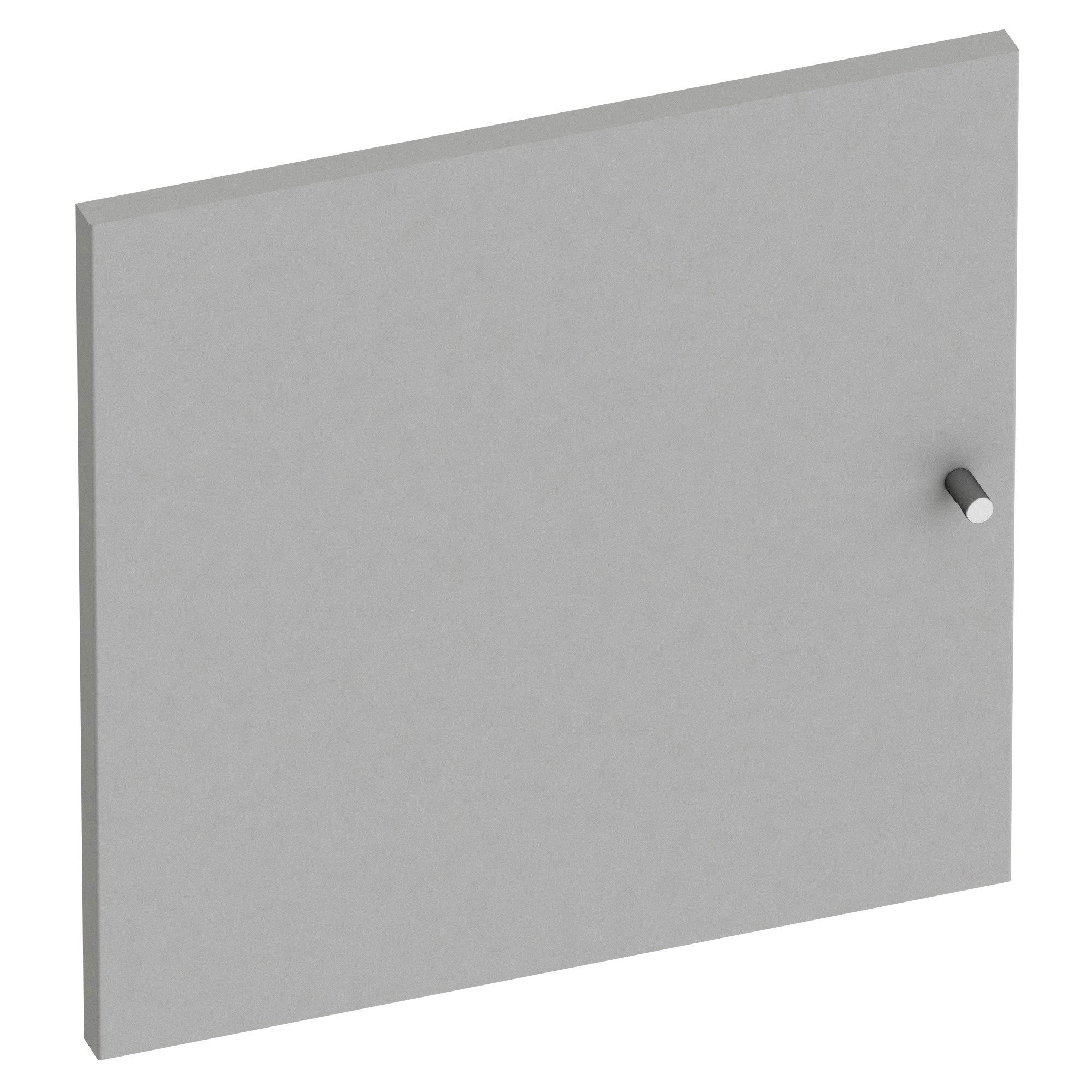 Porte battante SPACEO Home 40 x 40 x 1.6 cm, anthracite