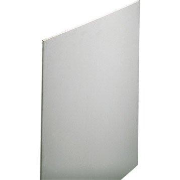 Plaque de plâtre Feu M0 2.5 x 1.2 m, BA13, entraxe 60 cm