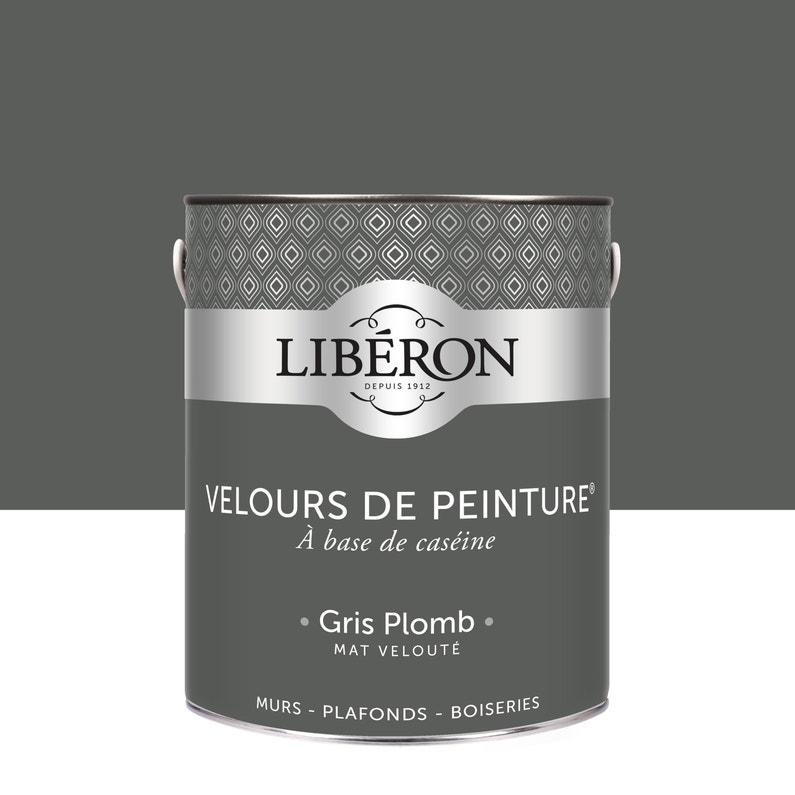 Peinture Multisupport Liberon Gris Plomb Velours 25 L