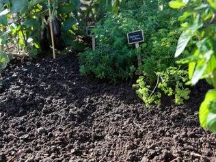 Etudier le terrain pour bien planter