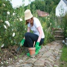 Outils de jardinage couper semer tailler leroy merlin for Tout sur le jardinage