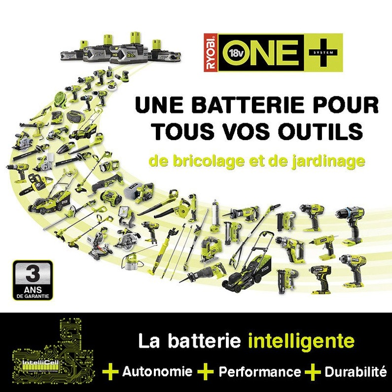 Elagueuse Sur Perche Sur Batterie Ryobi Opp1820 18 V