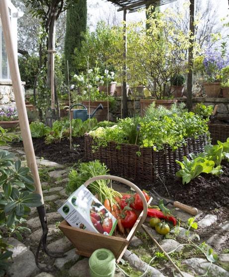 Un carré de potager pour le jardin