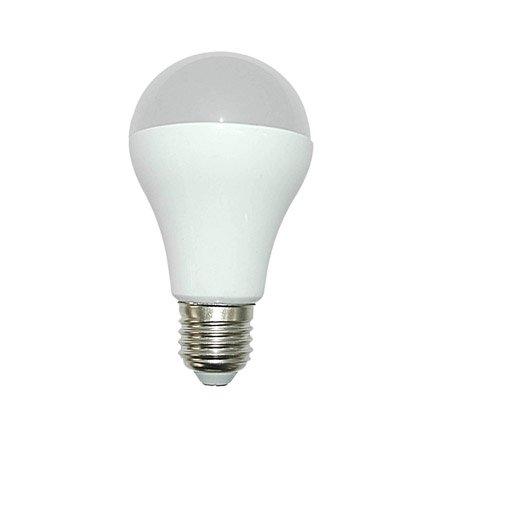Ampoule Standard Led 15w 1521lm Quiv 100w E27
