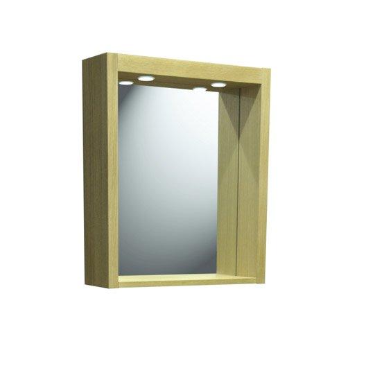 Miroir avec clairage int gr l 60 cm fjord leroy merlin for Miroir avec eclairage