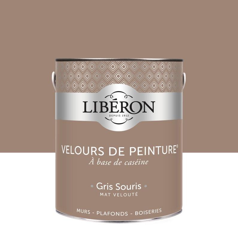 Peinture Multisupport Liberon Gris Souris Velours 2 5 L