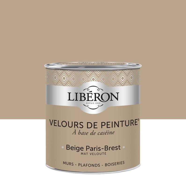 Peinture Multisupport Liberon Beige Paris Brest Velours 0 5 L
