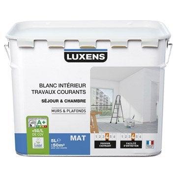 Peinture blanche mur et plafond Travaux courants LUXENS, mat 5 l
