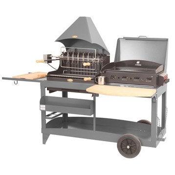 Barbecue et plancha au charbon de bois et au gaz LEMARQUIER Mendy alde, gris ant