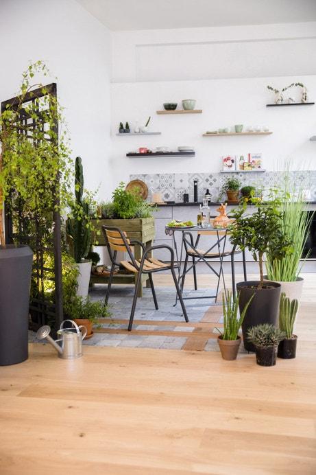 Un petit jardin à l'intérieur