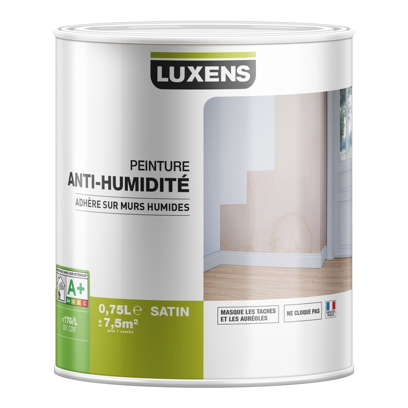 Peinture Antihumidité Luxens Blanc 2