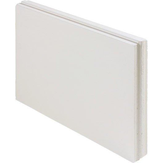 carreau de plâtre plein l.50 x l.66 x ep.7 cm | leroy merlin