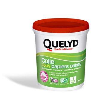 Colle tous papiers peints QUELYD, 1 kg