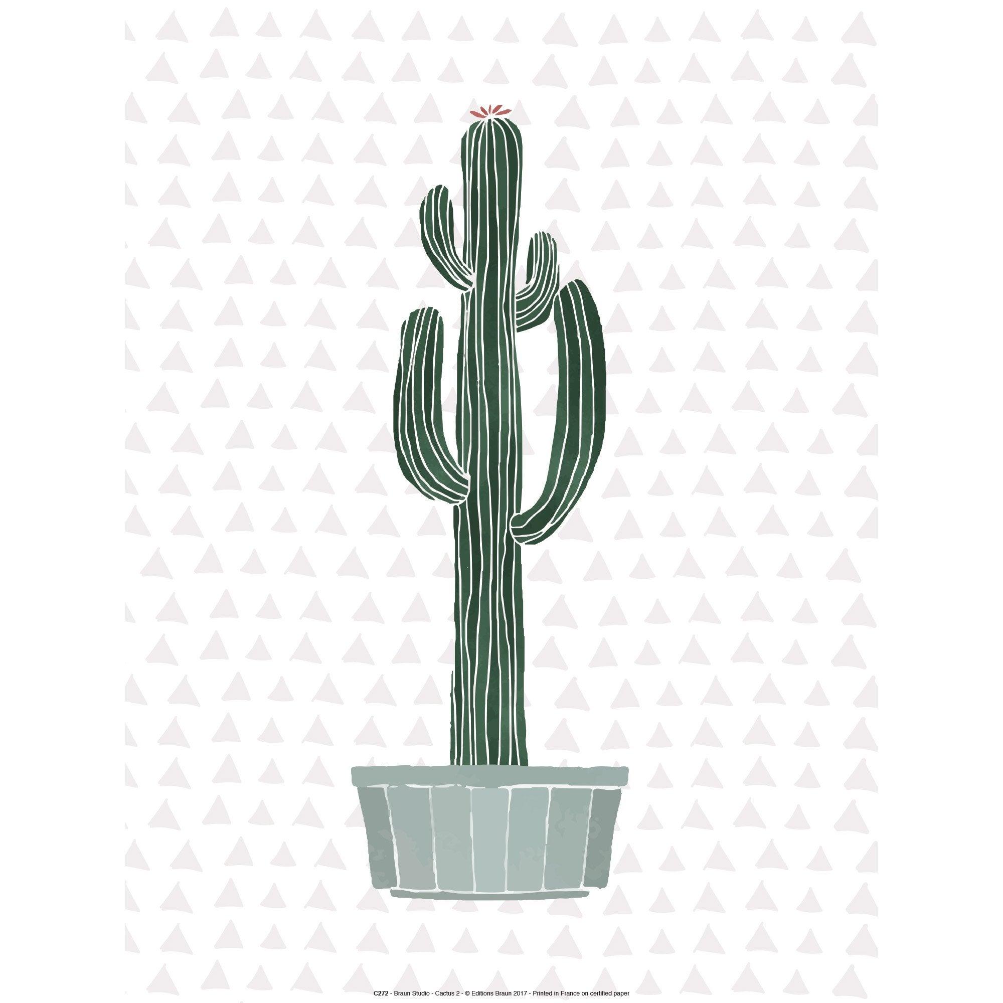 Affiche Cactus en pot l.41 x H.31 cm