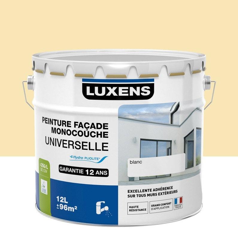 Peinture Façade Universelle Luxens Ton Pierre 10 L Leroy Merlin