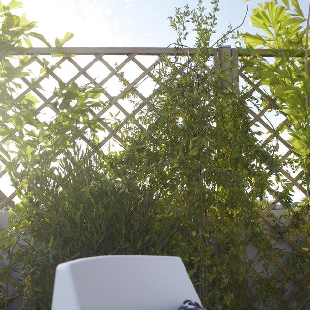Panneau Treillis Bois Ajoure Sonato L 180 Cm X H 180 Cm Naturel