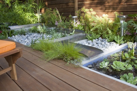 Une ambiance zen avec des plantes aquatiques et des galets