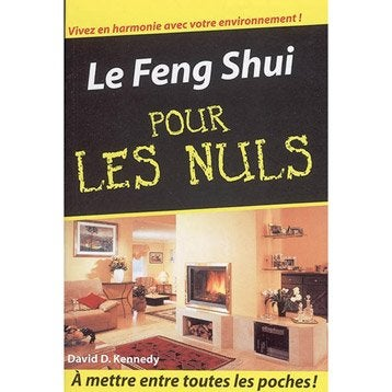 Le feng shui pour les nuls, First