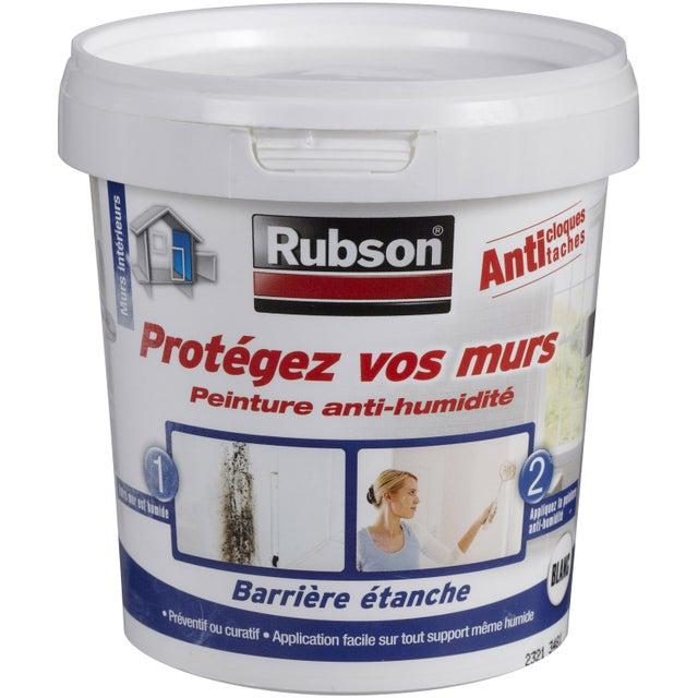 Peinture Antihumidite Protegez Vos Murs Rubson Blanc 0 75 L