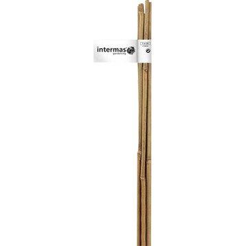 Lot de 2 tuteurs bambou droit NORTENE H.1.5 m
