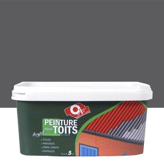 Peinture toiture bateau et piscine peinture hydrofuge - Tollens prix au litre ...