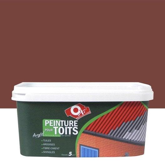 Peinture toiture bateau et piscine peinture hydrofuge au meilleur prix leroy merlin - Hydrofuge toiture leroy merlin ...