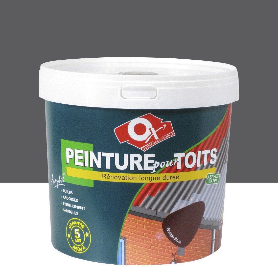 peinture toiture ext rieur acrytol oxytol ardoise 10 l. Black Bedroom Furniture Sets. Home Design Ideas