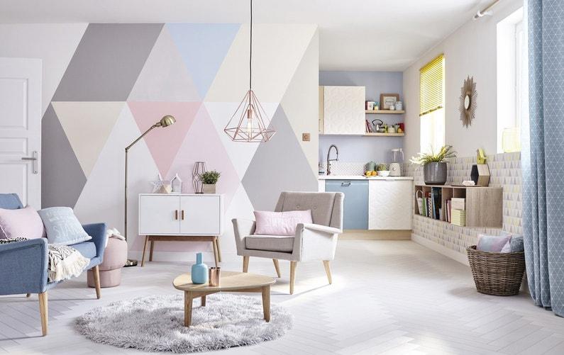 Un salon et une kitchenette au style scandinave