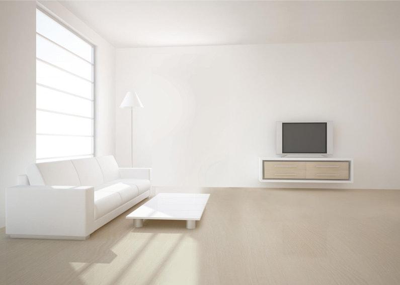 Peinture Blanc Mur Et Plafond Architecte Dulux Valentine Mat 10 L