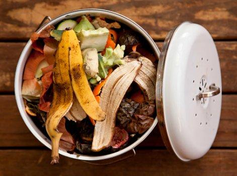Tout savoir sur le compost leroy merlin - Quand mettre du fumier dans son jardin ...