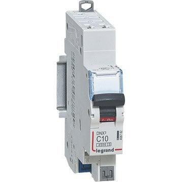 Disjoncteur phase + neutre LEGRAND 10 A