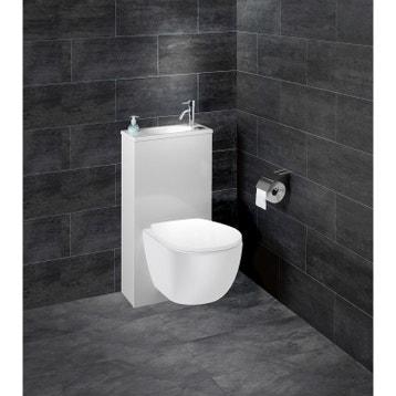 Wc Suspendu Wc Abattant Et Lave Mains Toilette Au Meilleur Prix