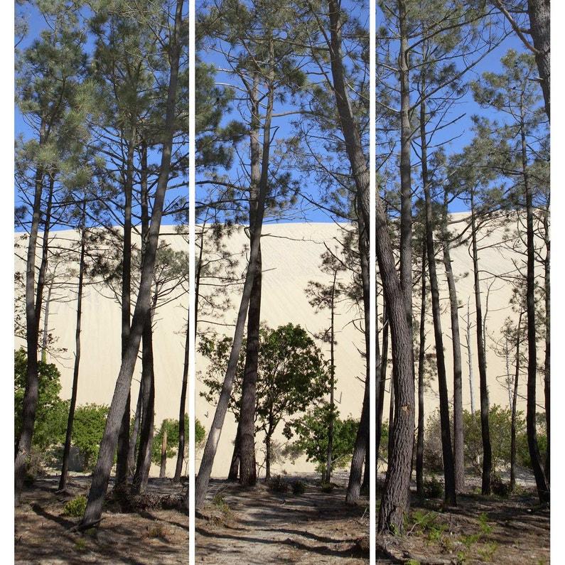 Toile Imprimée Dunes Arcachon L97 X H90 Cm