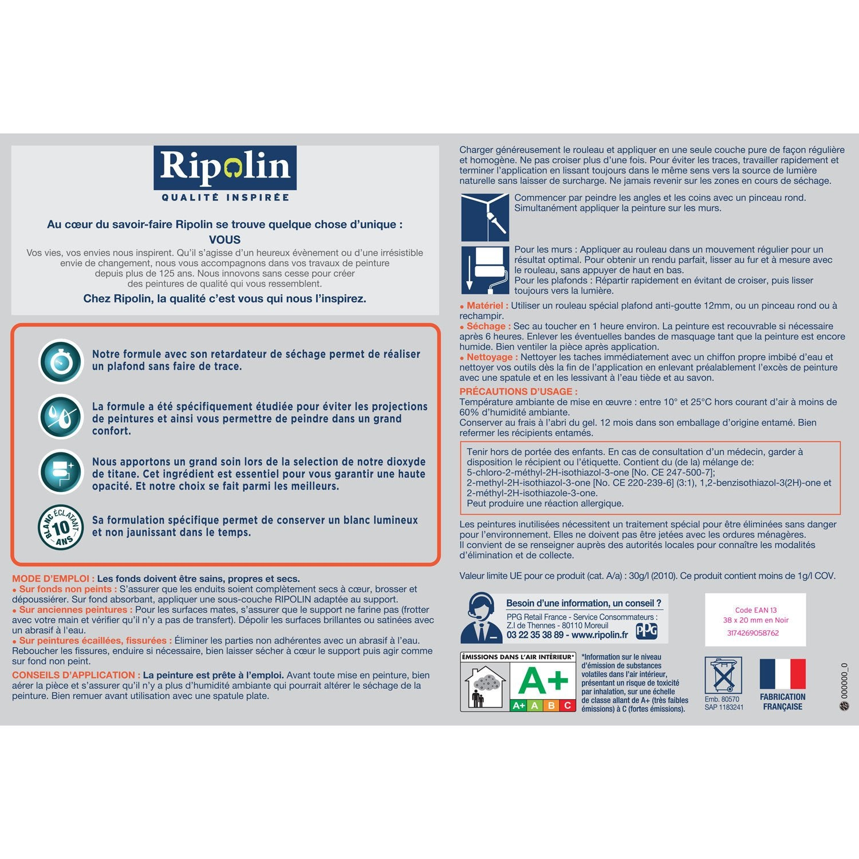 ... Peinture, Blanc, Plafond Xpro3 Sans Traces RIPOLIN, ...