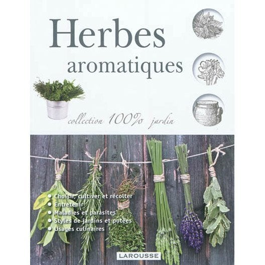Herbes aromatiques larousse leroy merlin - Herbes aromatiques cuisine liste ...