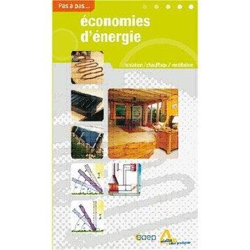 Economies d'énergie, Saep