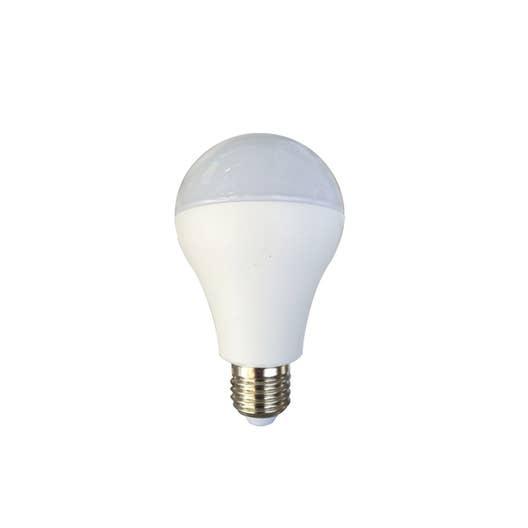 ampoule standard led 20w 1901lm equiv 120w e27 4000k lexman leroy merlin. Black Bedroom Furniture Sets. Home Design Ideas