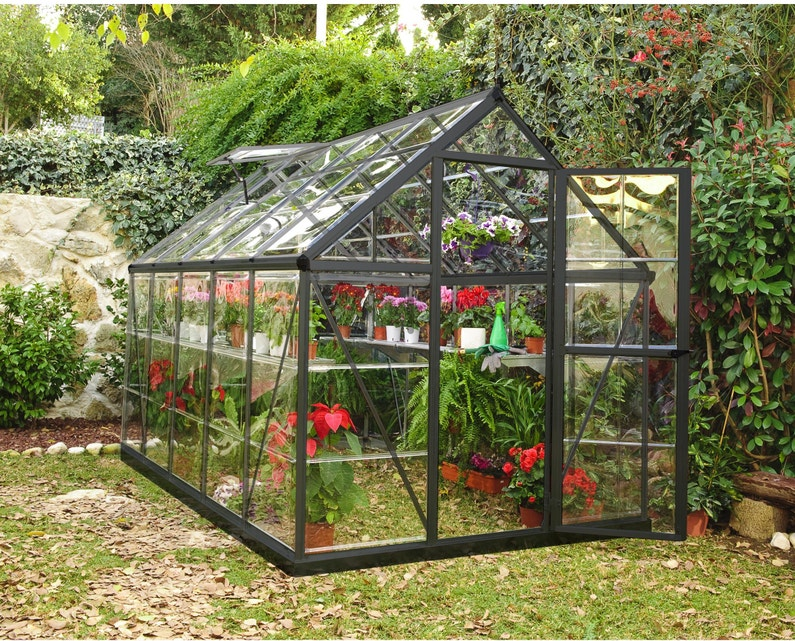 Serre de jardin alu et polycarbonate PALRAM Harmony, 5.6 m², gris anthracite
