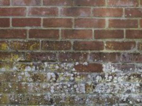 Traiter les murs contre l 39 humidit mur poreux friable for Produit nettoyage mur exterieur