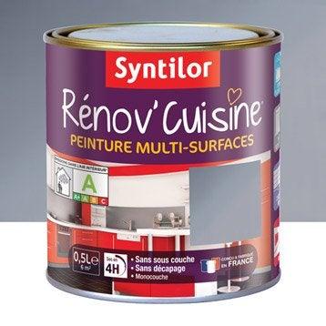 Peinture Rénov'cuisine SYNTILOR, Gris inox, 0.5 l